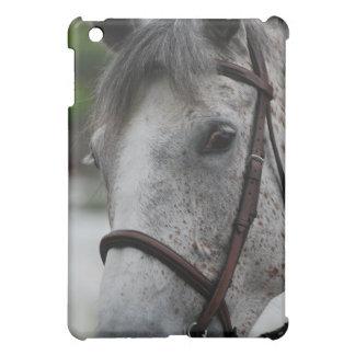 Caso lindo del iPad del caballo del Appaloosa