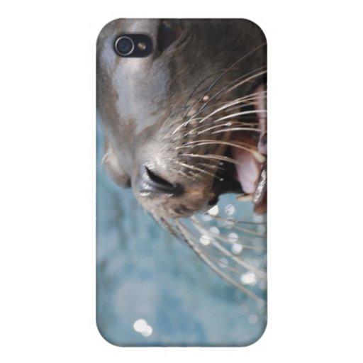 Caso lindo del iPhone 4 del león marino iPhone 4 Fundas