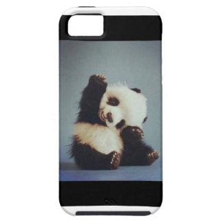 Caso lindo del iPhone 5 de la panda del bebé iPhone 5 Cárcasa