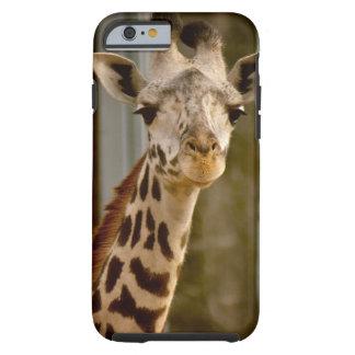 Caso lindo del iPhone 6 de la jirafa