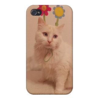 caso lindo del iphone del gatito iPhone 4 funda