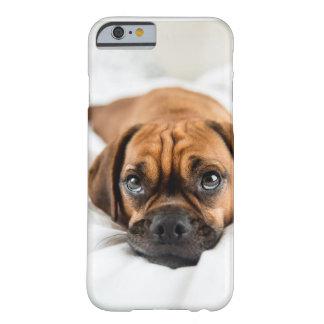 Caso lindo del perro de Puggle Funda Para iPhone 6 Barely There