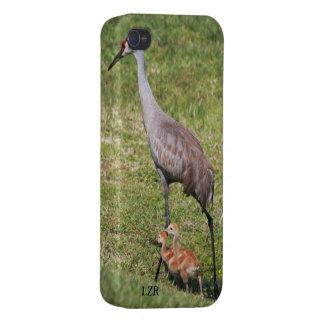 Caso listo del iPhone 4 - grúa y polluelos de Sand iPhone 4/4S Funda