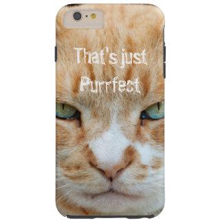 Caso malhumorado del iPhone de Purrfect del gato Funda Resistente iPhone 6 Plus