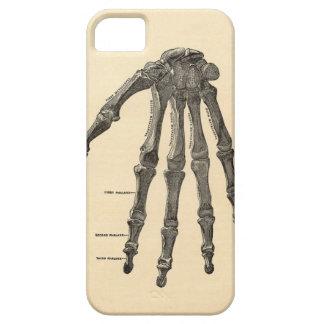 Caso médico del iPhone de los huesos de mano de la iPhone 5 Funda