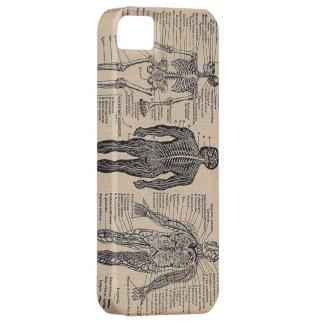 Caso médico esquelético humano del iPhone 5 del di iPhone 5 Case-Mate Cárcasa