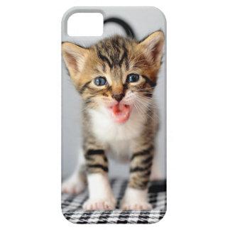 Caso Meowing del iPhone del gatito iPhone 5 Coberturas