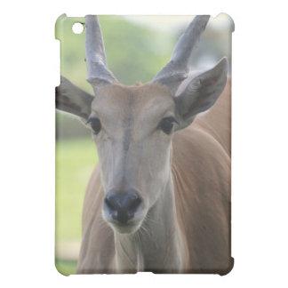Caso meridional del iPad de Eland