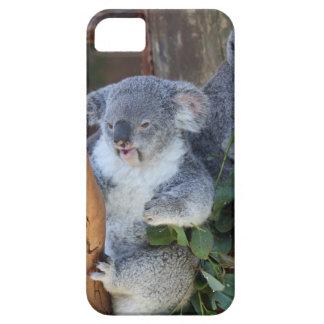 Caso mimoso del iPhone del oso de koala Funda Para iPhone SE/5/5s
