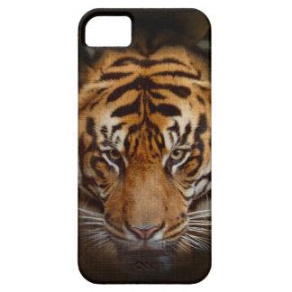 Caso móvil del iPhone del tigre de la bella arte iPhone 5 Carcasas