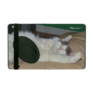 Caso mullido del iPad 2/3/4 del gato el dormir