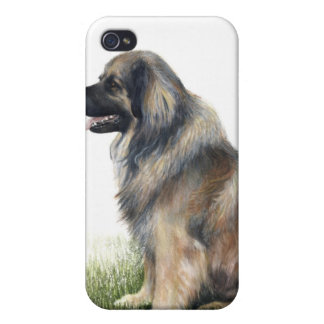 caso pedigrí Leonberger del iPhone del perro iPhone 4 Carcasas