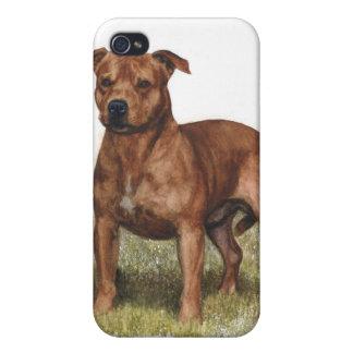 caso pedigrí Pitbull del iPhone del perro iPhone 4 Fundas