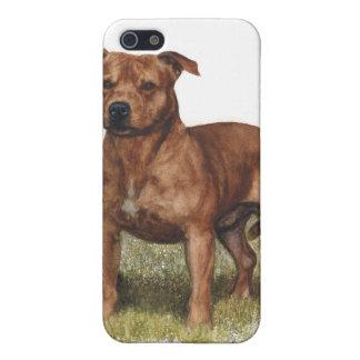 caso pedigrí Pitbull del iPhone del perro iPhone 5 Carcasa