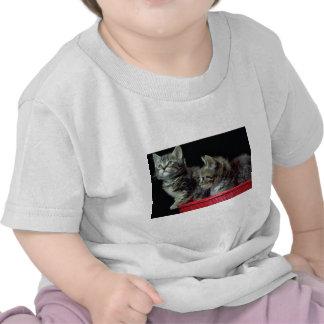 Caso perdido 2 camisetas