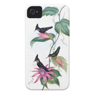 Caso precioso del iPhone 4 de los COLIBRÍES iPhone 4 Case-Mate Carcasas