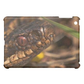 Caso principal del iPad de las serpientes