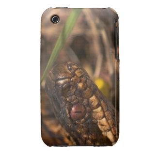 Caso principal del iPhone 3G/3GS de las serpientes Case-Mate iPhone 3 Protector