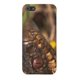 Caso principal del iPhone 4/4S de las serpientes iPhone 5 Funda