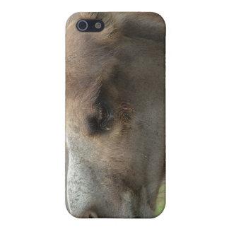 Caso principal del iPhone 4 del camello iPhone 5 Cárcasas