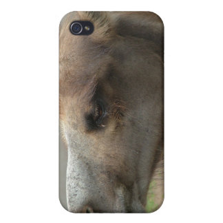 Caso principal del iPhone 4 del camello iPhone 4 Protector