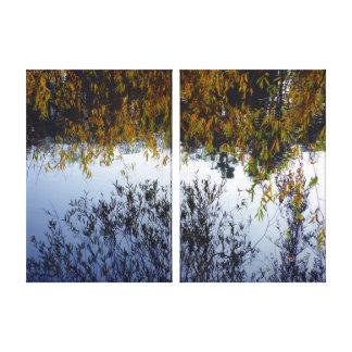 Caso Reflections Lona Estirada Galerías