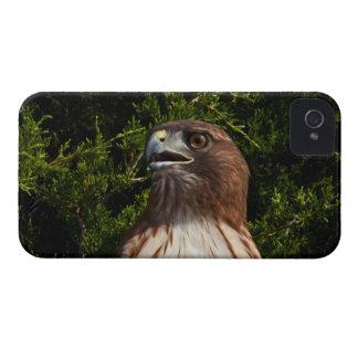 caso Rojo-atado del iPhone 4 del halcón Case-Mate iPhone 4 Coberturas