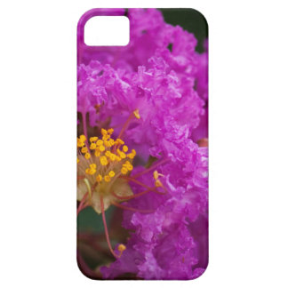 Caso rosado brillante del iPhone 5 de la floración iPhone 5 Carcasa