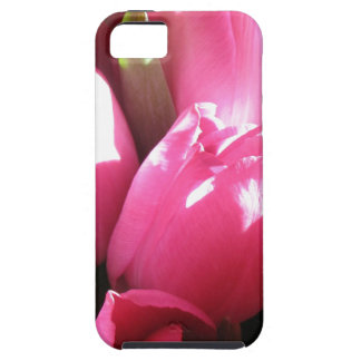 Caso rosado de Iphone 5 de los rosas iPhone 5 Carcasas