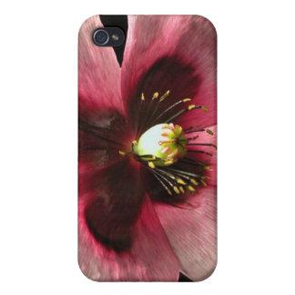 Caso rosado del iPhone 4 de la amapola iPhone 4 Carcasa