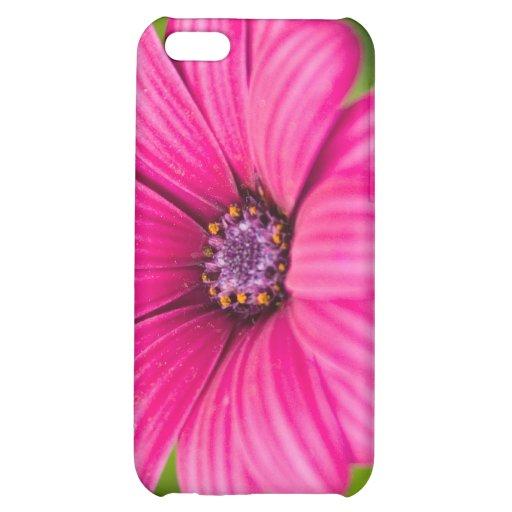 Caso rosado del iPhone 4 de la flor de la margarit