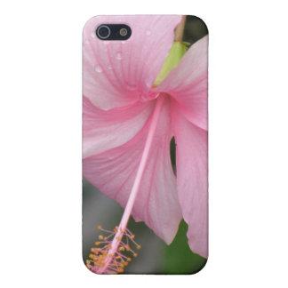 Caso rosado del iPhone 4 de la flor del hibisco iPhone 5 Protectores