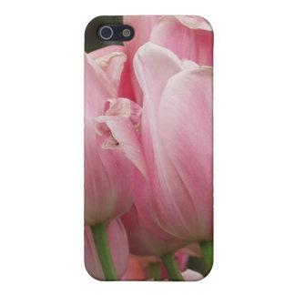 Caso rosado del iPhone 4 de los tulipanes iPhone 5 Protectores