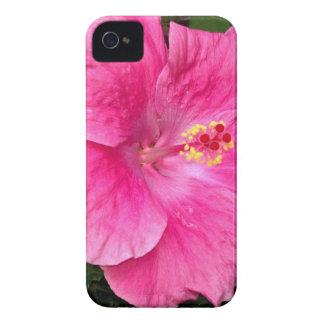 Caso rosado del iPhone 4 del hibisco Case-Mate iPhone 4 Funda