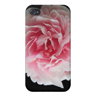 Caso rosado del iPhone 4 del Peony iPhone 4 Fundas