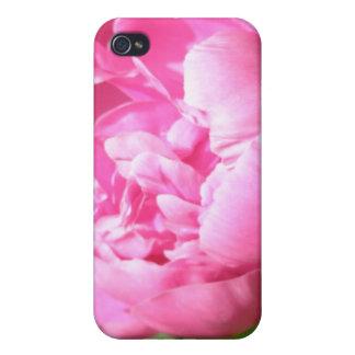 Caso rosado del iPhone 4 del Peony iPhone 4 Protectores