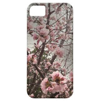 Caso rosado del iPhone 5/5s de las flores de iPhone 5 Funda