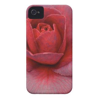 Caso rosado del iPhone de la camelia Case-Mate iPhone 4 Fundas