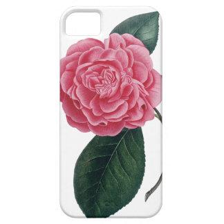 Caso rosado del iPhone de la camelia iPhone 5 Fundas