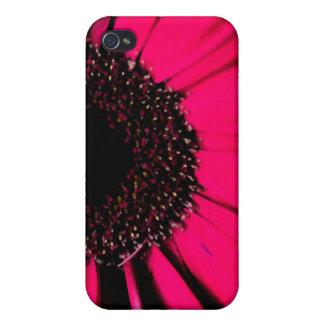 Caso rosado del iPhone de la margarita de Gerber iPhone 4/4S Funda