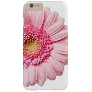 Caso rosado del iPhone de la margarita del Gerbera Funda Barely There iPhone 6 Plus