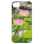 Caso rosado del iPhone de Lotus iPhone 5 Case-Mate Cárcasas