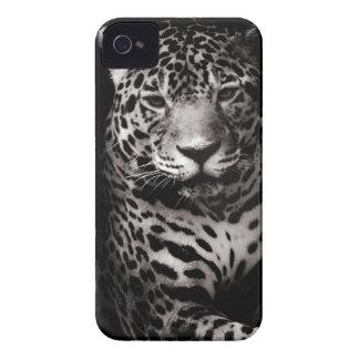 Caso salvaje de Jaguar Blackberry iPhone 4 Coberturas