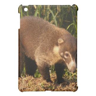 Caso salvaje del iPad de Mundi del Coati