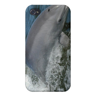 Caso salvaje del iPhone 4 del delfín iPhone 4 Coberturas