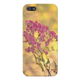 Caso salvaje del iPhone de los rosas iPhone 5 Carcasa