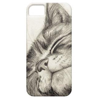 caso scritching del iPhone 5 del gato de tabby iPhone 5 Carcasa