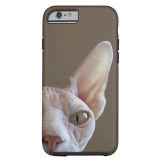 Caso sin pelo del iPhone 6 del gato de Sphynx Funda De iPhone 6 Tough