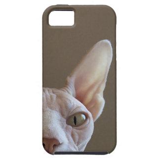 Caso sin pelo del iPhone del gato de Sphynx iPhone 5 Protectores