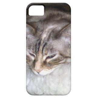 Caso soñoliento del iPhone 5 del gatito iPhone 5 Coberturas